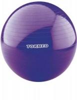 Мяч гимнастический Torneo A-209 - Интернет-магазин школьного и спортивного оборудования Квазар, Екатеринбург