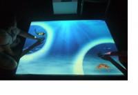 Интерактивная система OMi-Vista (комплект с лицензией на 12 базовых программ) - Интернет-магазин школьного и спортивного оборудования Квазар, Екатеринбург